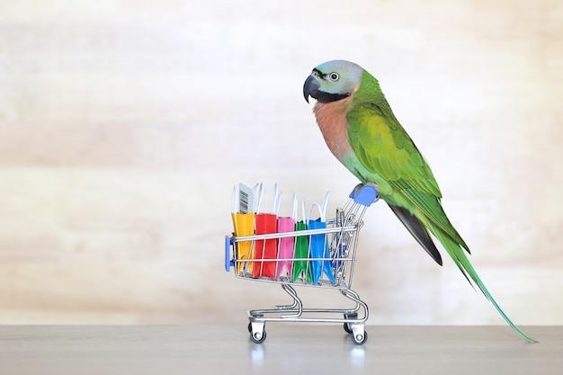Papagei auf vorbildlichem miniaturwarenkorb und einkaufstasche auf wooder Premium Fotos