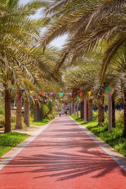 Park für spaziergänge und sport in palm jumeirah in dubai Premium Fotos