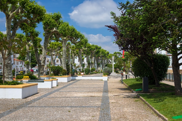 Park in miranda do corvo, portugal Premium Fotos