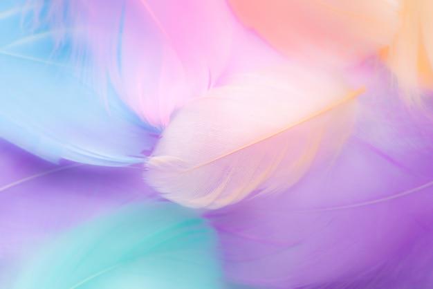 Pastellfarbenfeder-zusammenfassungshintergrund Premium Fotos
