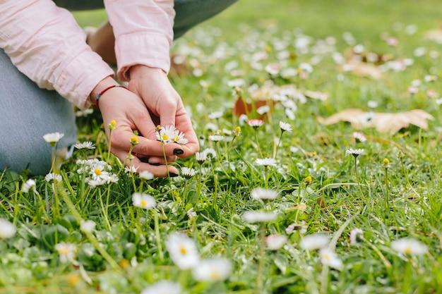 Person auf gras mit gänseblümchen Kostenlose Fotos