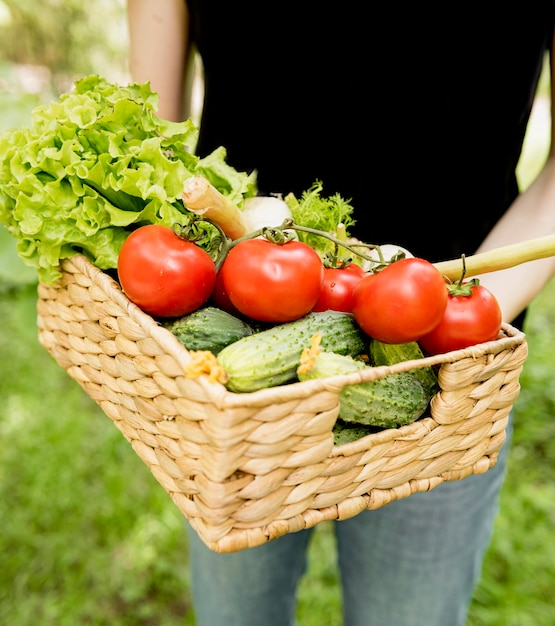 Person, die eimer mit tomaten und gurken hält Kostenlose Fotos