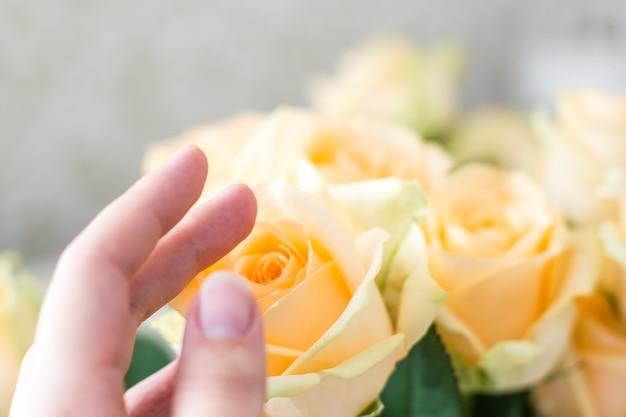 Pfirsich rosen bouquet und hand Premium Fotos