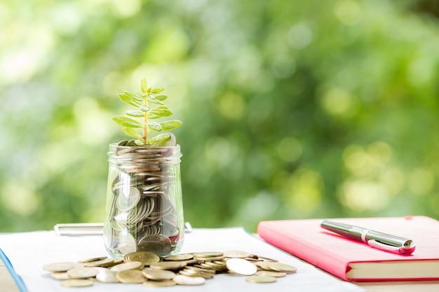 Pflanze wächst in sparmünzen Kostenlose Fotos