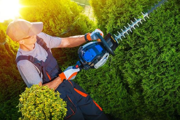Pflanzen trimmen werke Kostenlose Fotos