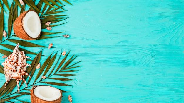 Pflanzenblätter in der nähe von frischen kokosnüssen und muscheln an bord Kostenlose Fotos