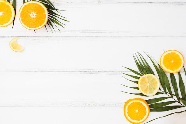 Pflanzenblätter in der nähe von frischen zitrusfrüchten Kostenlose Fotos