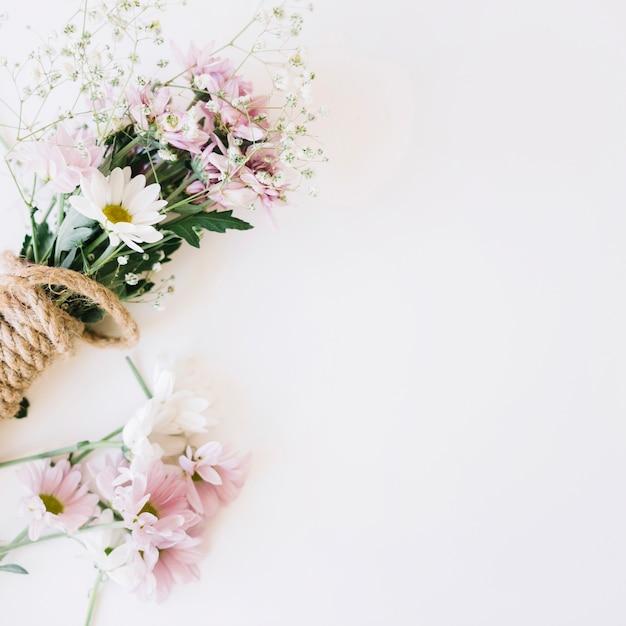 Pflanzendekoration mit platz rechts Kostenlose Fotos