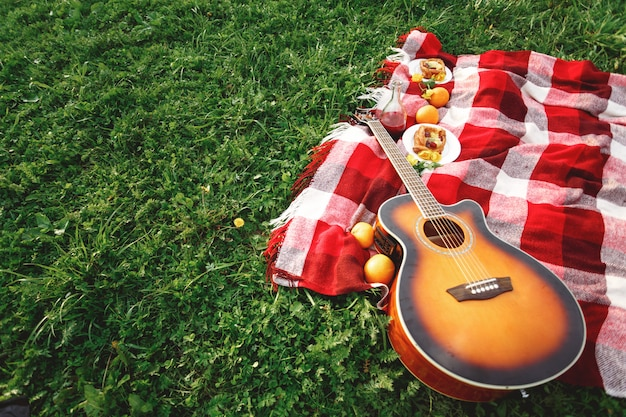 Picknick mit gitarrenmusik auf gras Premium Fotos