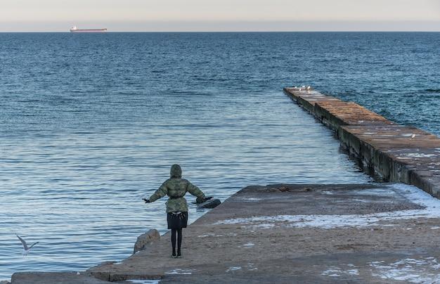 Pier am strand in wintertag Premium Fotos