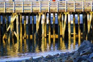 Pier, farbe Kostenlose Fotos