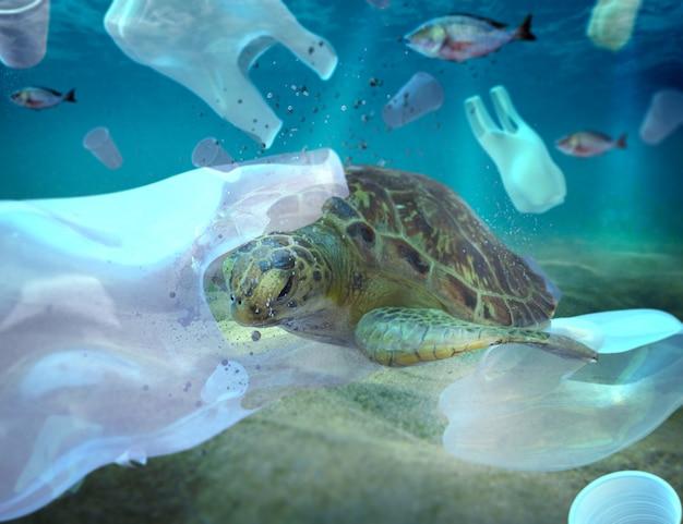 Plastikverschmutzung im umweltproblem des ozeans schildkröten können plastik fressen und denken, sie seien quallen Premium Fotos