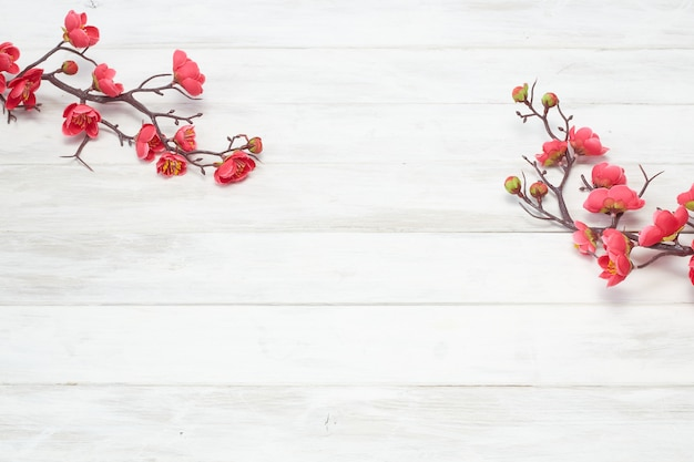Plum flowers blossom auf weißer hölzerner planke Premium Fotos