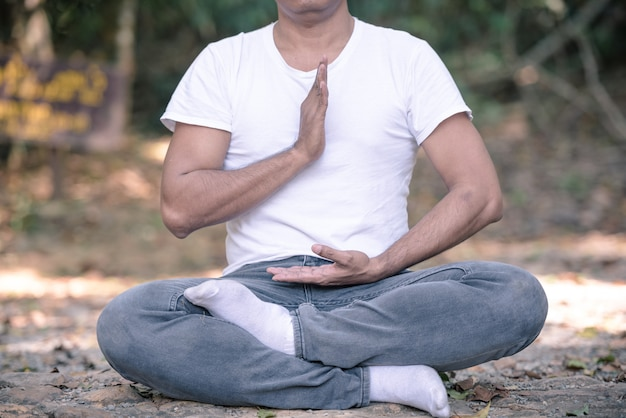 Porträt des asiatischen mannes tai chi-haltung im park tuend. Premium Fotos