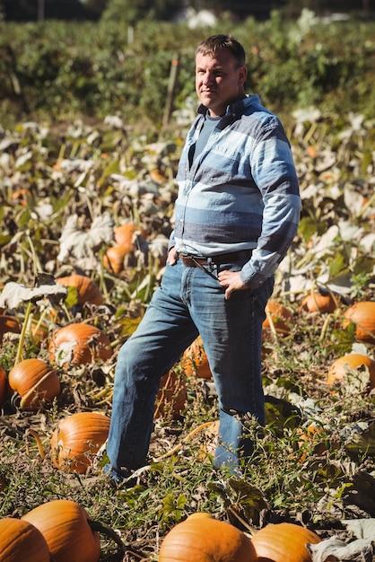 Porträt des landwirts stehend auf dem kürbisgebiet Kostenlose Fotos