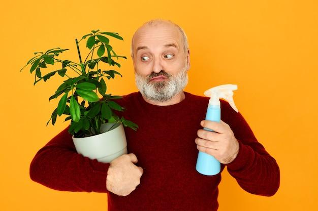 Porträt des lustigen verwirrten kahlen unrasierten männlichen rentners, der wassersprinkler und topf mit grüner pflanze hält Kostenlose Fotos