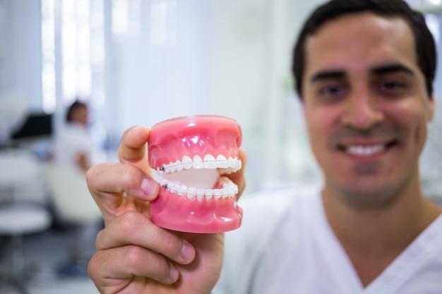 Porträt des zahnarztes, der einen satz zahnersatz hält Kostenlose Fotos