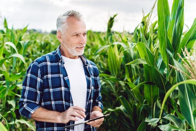 Porträt eines älteren agronomen, der maisfeld mit ipad kontrolliert Premium Fotos