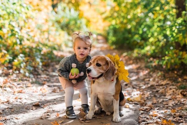 Porträt eines kleinen mädchens, das den ball steht nahe spürhundhund im wald hält Kostenlose Fotos