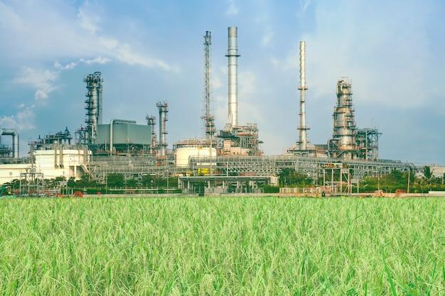 Raffinerie oder petrochemische industrie mit reisfeld. Premium Fotos