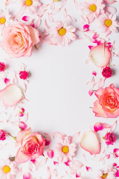 Rahmen aus Blumen und Blütenblättern | Download der kostenlosen Fotos