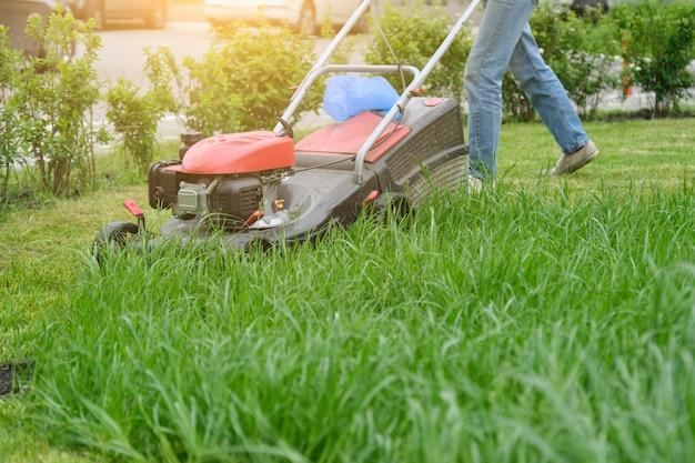 Rasenmäher, der grünes gras, gärtner mit rasenmäherfunktion schneidet Premium Fotos