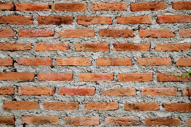 Raue zement-backsteinmauer eines alterngebäudes, beschaffenheitshintergrund Premium Fotos
