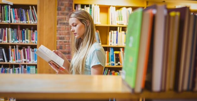 Recht junges blondes lesebuch in der bibliothek Premium Fotos