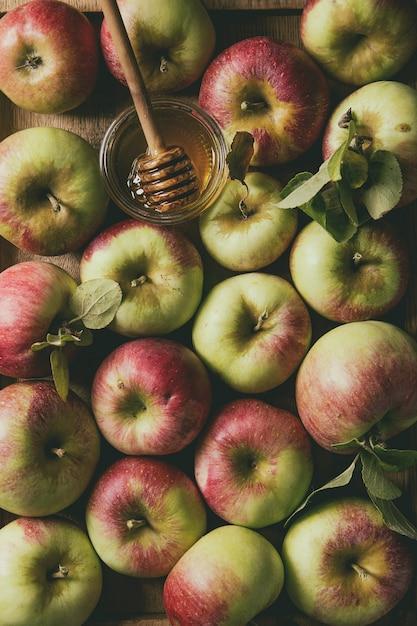 Reife gartenäpfel Premium Fotos