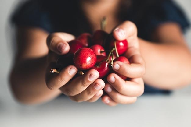 Reife kirschen in händen. vegan, öko, landwirtschaftliche produkte, bio-lebensmittel Premium Fotos