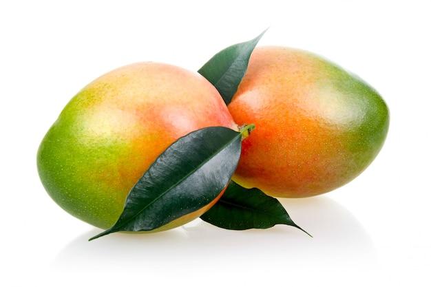 Reife mango trägt mit den blättern früchte, die auf weißem hintergrund lokalisiert werden Premium Fotos