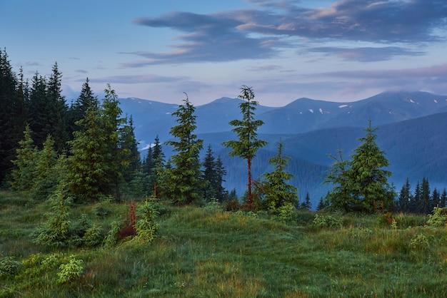Reisen, trekking. sommerlandschaft - berge, grünes gras, bäume und blauer himmel. Kostenlose Fotos