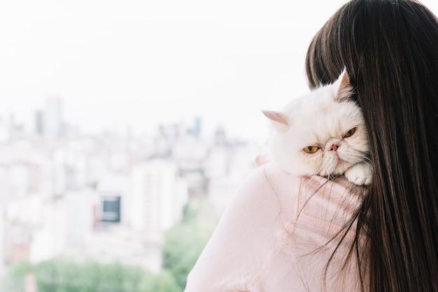 Reizende haustierzusammensetzung mit schläfriger weißer katze Premium Fotos
