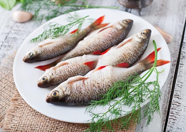 Roher fisch auf weißer platte mit dill Kostenlose Fotos