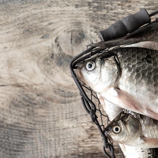 Roher frischer flussfisch auf einem holztisch Premium Fotos