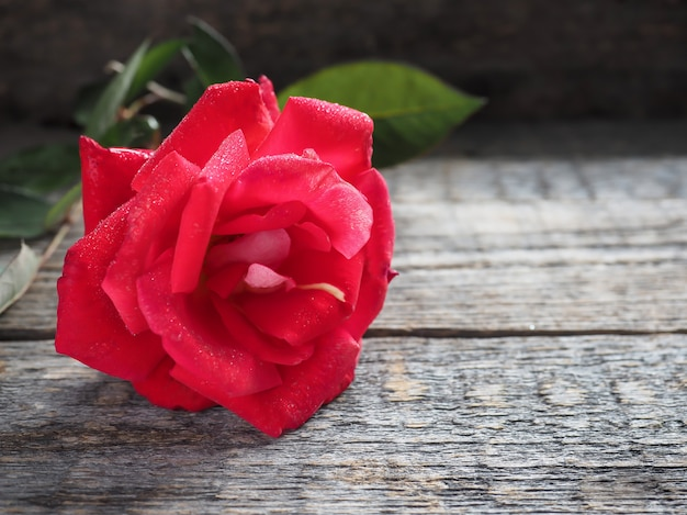 Romantischer hintergrund mit rotrose auf hölzerner tabelle. Premium Fotos