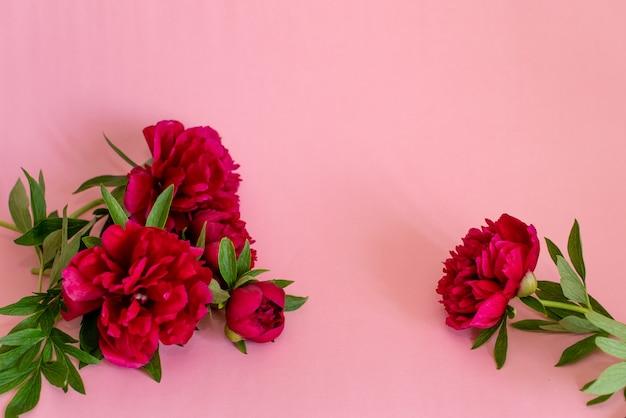 Rosa blumenstrauß von pfingstrosen auf rosa Premium Fotos