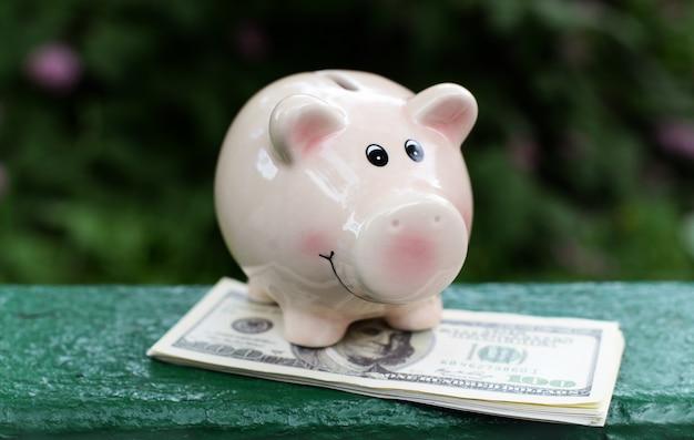 Rosa geldkasten für münzen für wirtschaft Premium Fotos
