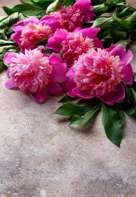 Rosa pfingstrosenblumen auf dem boden Premium Fotos