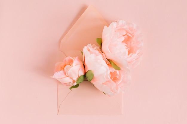 Rosa pfingstrosenblumen im umschlag auf farbigem hintergrund Kostenlose Fotos