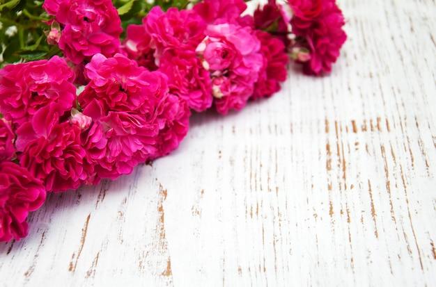 Rosa rosen Premium Fotos