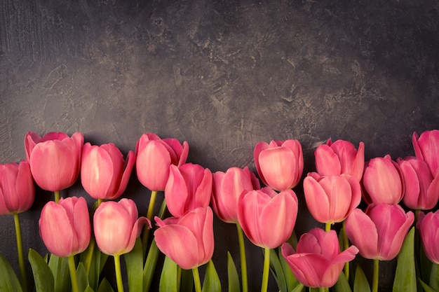 Rosa tulpen auf einem dunkelgrauen schmutzhintergrund. copyspace. Premium Fotos