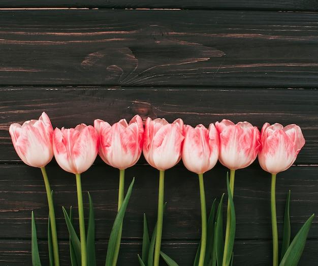 Rosa tulpenblumen zerstreut auf tabelle Kostenlose Fotos