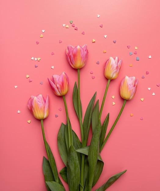 Rosa und gelbe tulpen verziert mit kleinen herzformen auf rosa hintergrund flache draufsicht mit kopienraum Premium Fotos