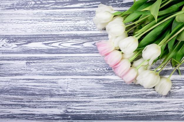 Rosa und weiße sehr zarte tulpen auf weißem, grauem hölzernem backgrou Premium Fotos