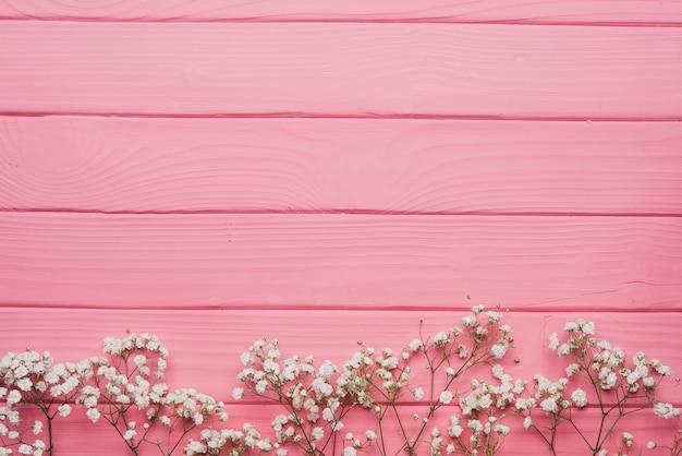 Rosafarbene hölzerne Oberfläche mit dekorativen Zweigen Kostenlose Fotos