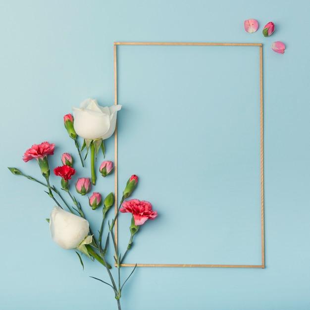 Rosen- und nelkenblumen mit modellrahmen Kostenlose Fotos