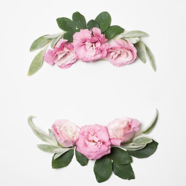 Rosenblüten und grüne pflanzen Kostenlose Fotos