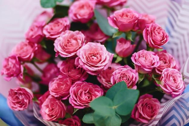 Rosenbuschwanne auf einfachem backround Premium Fotos