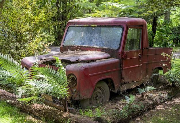 Rostiges rotes auto, das verlassen in einem wald liegt, der von bäumen umgeben ist Kostenlose Fotos